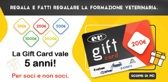 giftcard 550x270